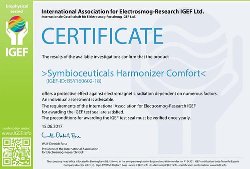 IGEF-Zertifikat-BSY-EN-17