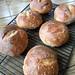 Sourdough Bread Boules