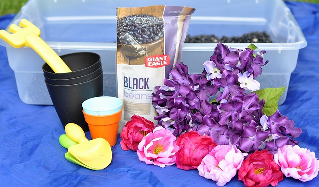 The Flower Garden Sensory Bin