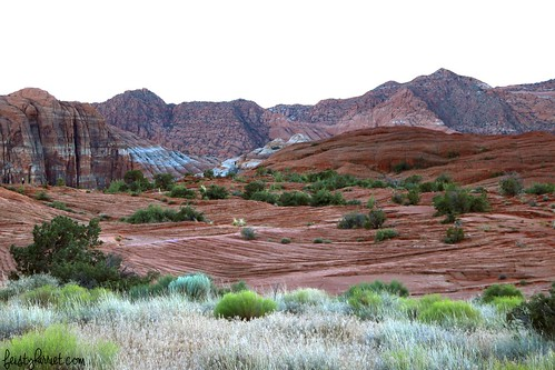 Snow Canyon State Park_feistyharriet_InstaMeet St George_May 2017 (5) | by FeistyHarriet