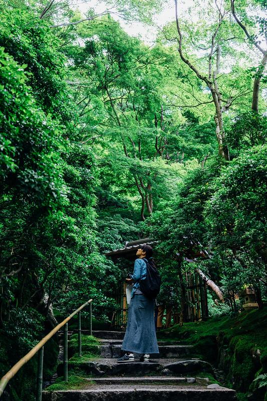 Kyoto_Rurikoin_16