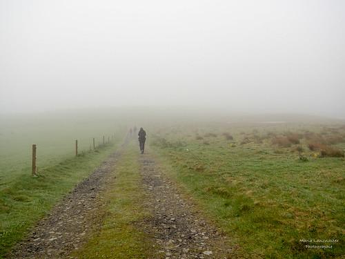 Weg zum Aussichtspunkt Seabird City (Marwick-Head-Naturreservat)