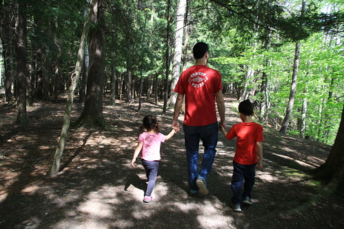 Letchworth State Park 2017