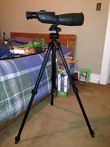 New-to-me spotting scope!  Vortex Viper HD