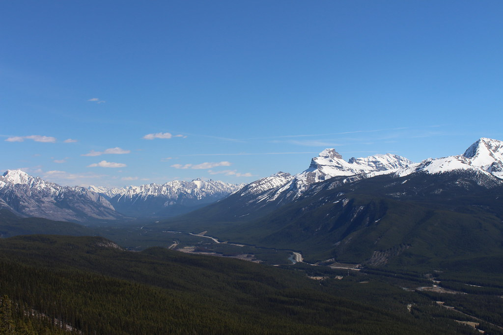 Castle Junction Area (Banff National Park), May 2017