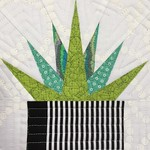 Aloe Pic 2