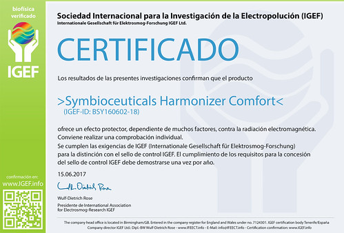 IGEF-Zertifikat-BSY-SP-17