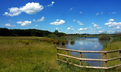 Grimley Gravel Pits - summer afternoon over the lake