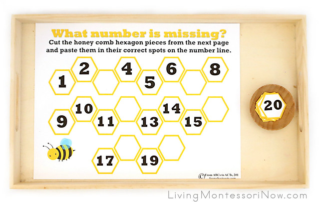 What Number Is Missing from the Honeycomb? Activity
