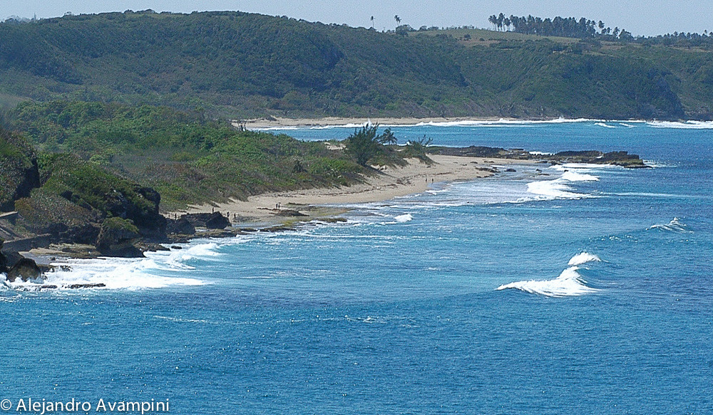 Playa Rincón delicia de Surfistas en Puerto Rico