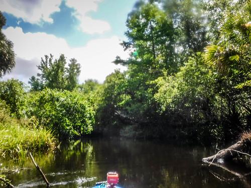 Juniper Springs Creek-105