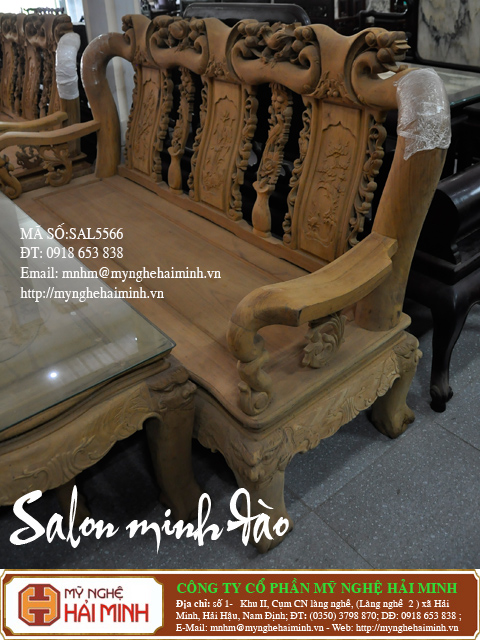 salon minh dao c copy
