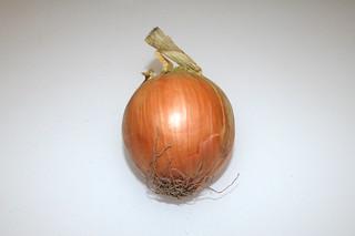 05 - Zutat Zwiebel / Ingredient onion