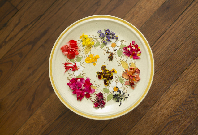 petals on a plate