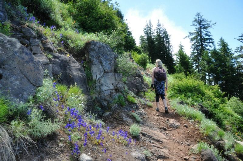 Iron Mountain Hike Higher @ Mt. Hope Chronicles