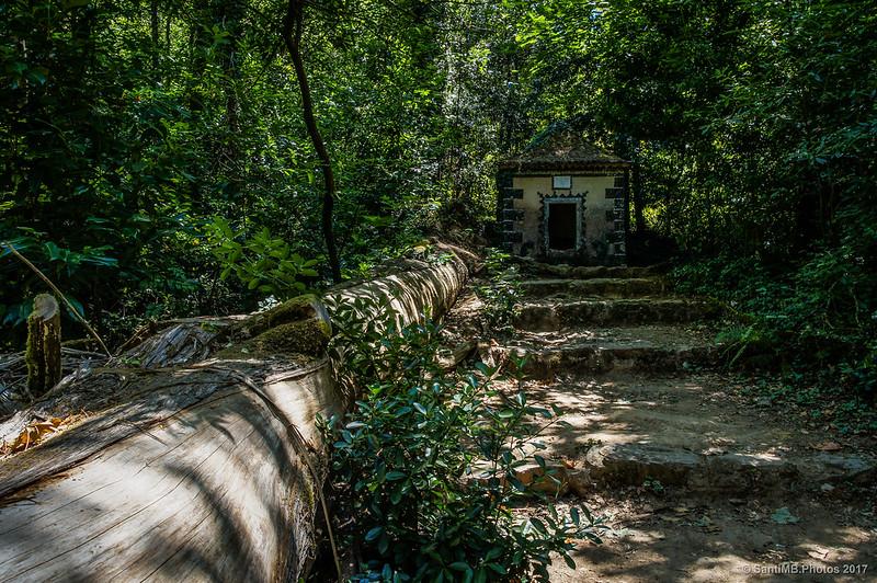 Subiendo a la Capela de Annas en Buçaco