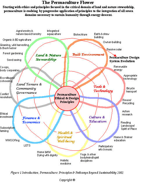 The Permaculture Flower