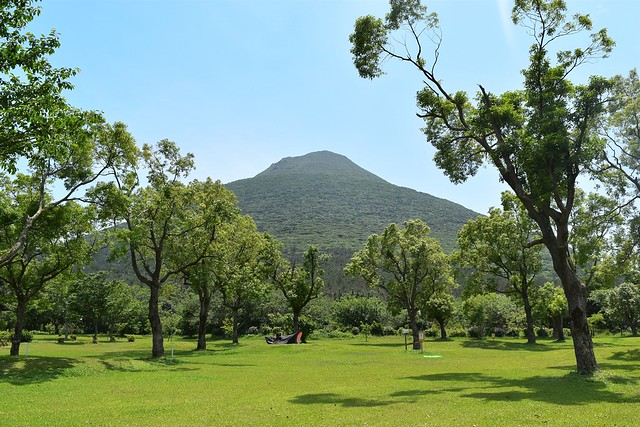 かいもん山麓ふれあい公園キャンプ場から見上げる開聞岳