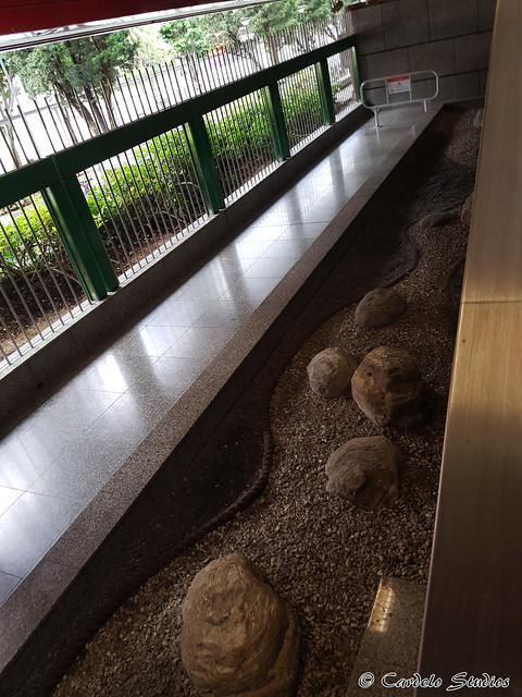 Lakeside MRT Station 03