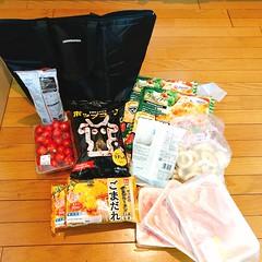 ハナマサー必需品、オリジナル保冷バッグ