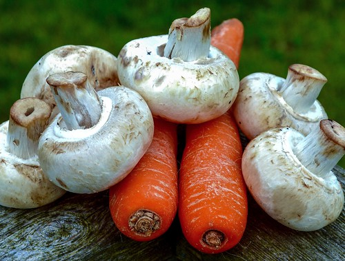 Carrots and Mushrooms | by rustyruth1959