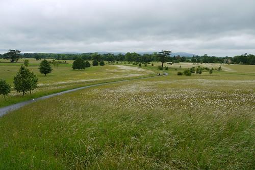 Capability Brown Landscape