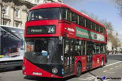 Wrightbus NRM NBFL - LTZ 1016 - LT16 - Pimlico 24 - Metroline - London 2017 - Steven Gray - IMG_8597