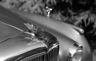 FILM - Bentley | by fishyfish_arcade