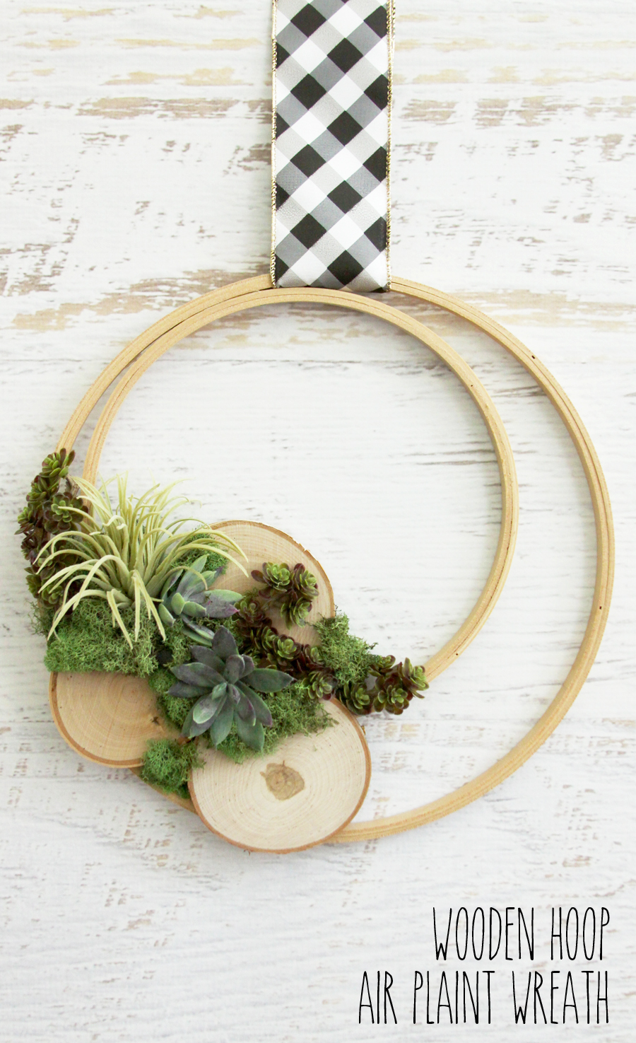 Wooden-Hoop-Air-Plant-Wreath