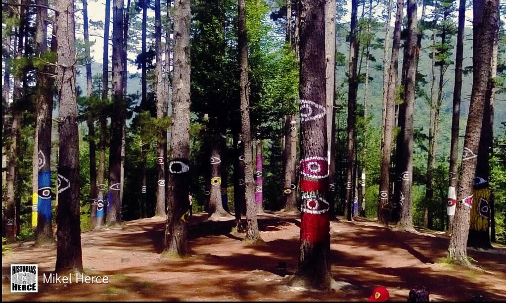 141. Bosque de Oma 2