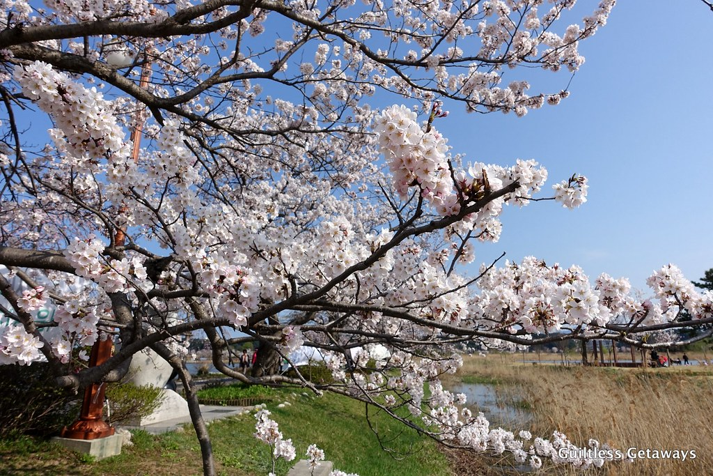 gyeongpo-lake-korea.jpg