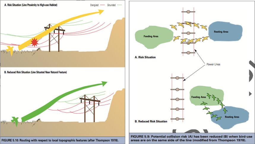 圖左:輸電線路的位置,如與鳥類飛行路徑有所重疊,可能增加其撞擊風險。圖右:輸電線路的路徑與架設,對鳥類而言其實也是一種「棲地切割」。(資料來源)