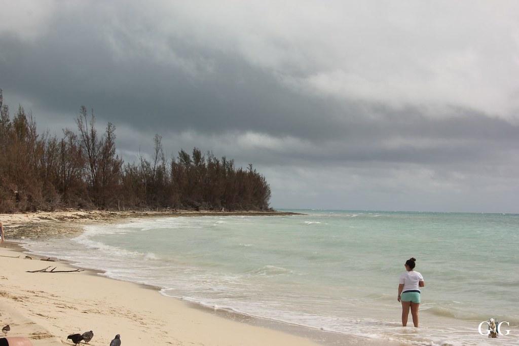 Miami und Bahamas November 201625