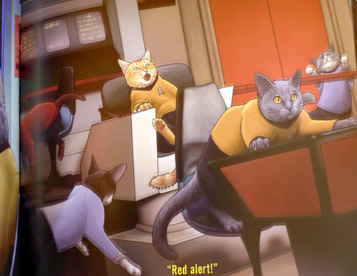 2017-06-14 - Star Trek Cats - 0009 [flickr]