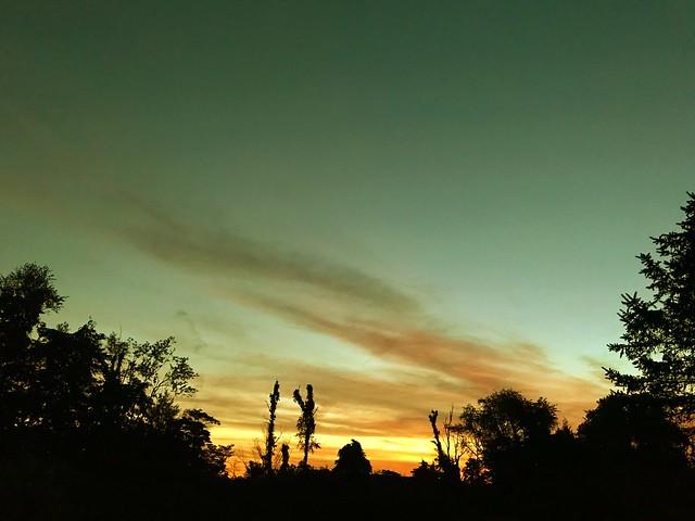 Proto-sunrise