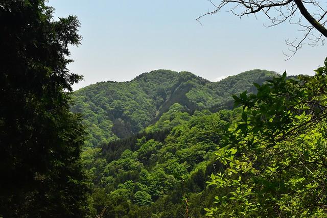 畦ヶ丸 登山道から見える展望