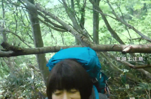 宇多田ヒカル、木の枝に頭をぶつけてしまう「#頭上注意」