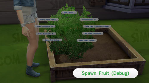 Spawn Fruit