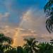 Lever de soleil sur les caraïbes