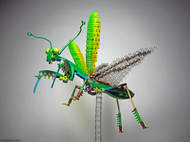 Flying Mantis
