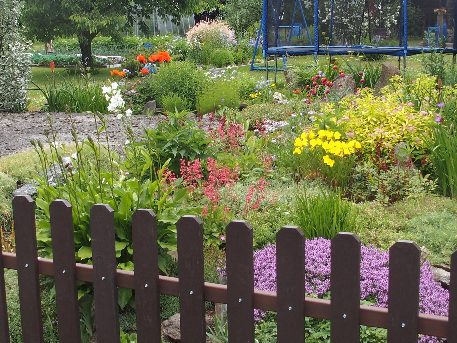 Vacker trädgård