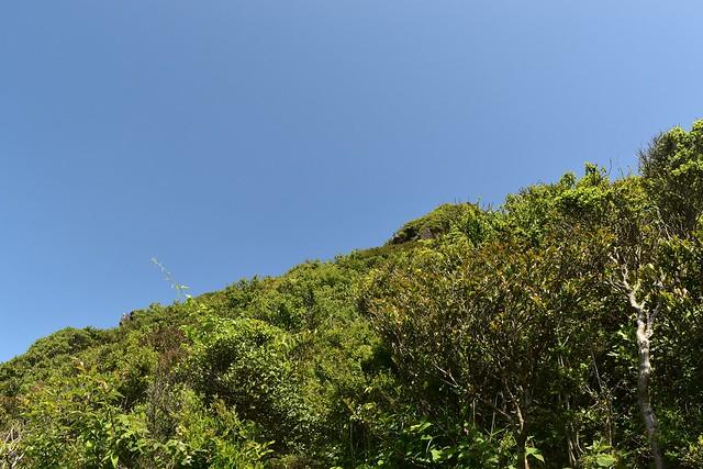 開聞岳 山頂までもうすぐの地点