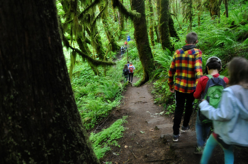 Alsea and Green Peak Falls Hikers @ Mt. Hope Chronicles