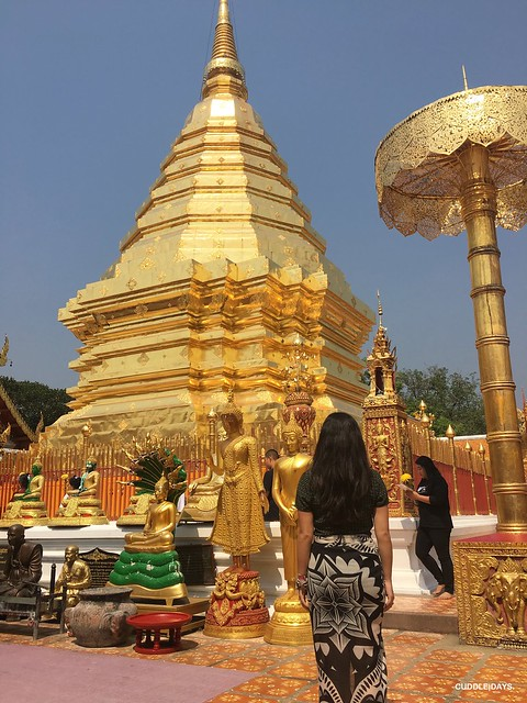 DOI SUHEP 6