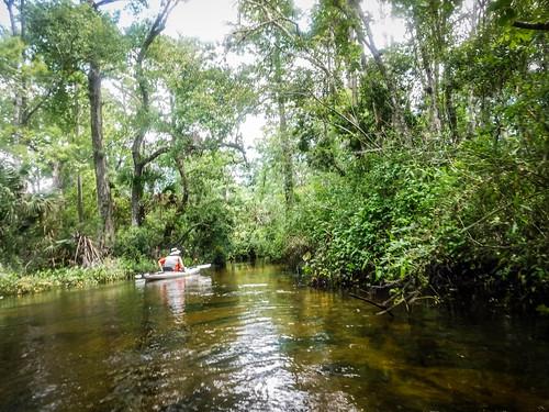 Juniper Springs Creek-122