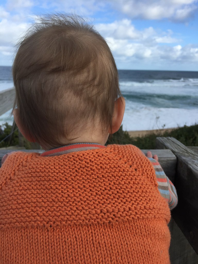 baby head looking out for whales at the beach, dressed in a mama knitted milo vest
