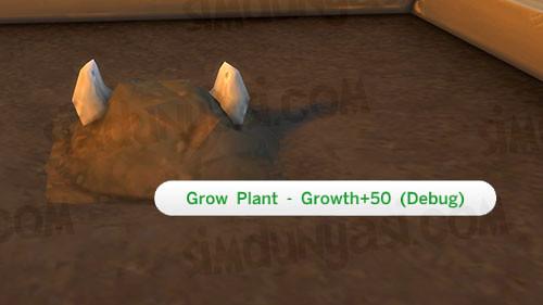Grow Plant CowPlant Berry
