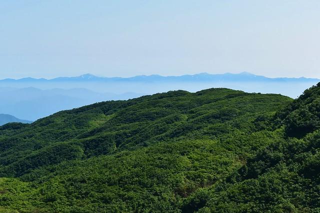 二王子岳から望む朝日連峰