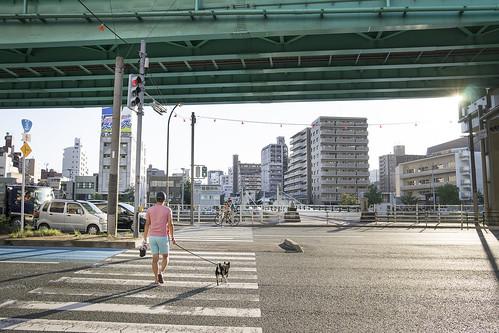 JA C9 13 018 福岡市博多区千代 Sony A7 × ELMARIT-R 28mm F2.8#