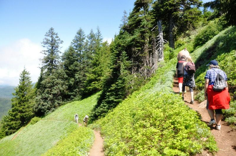 Iron Mountain Hike Switchbacks @ Mt. Hope Chronicles